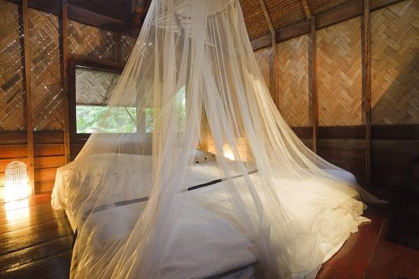 ปราบไข้มาลาเรีย (Malaria) ให้อยู่หมัด แค่เพียงกำจัดยุงก้นปล่อง