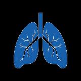 ศูนย์ระบบการหายใจ
