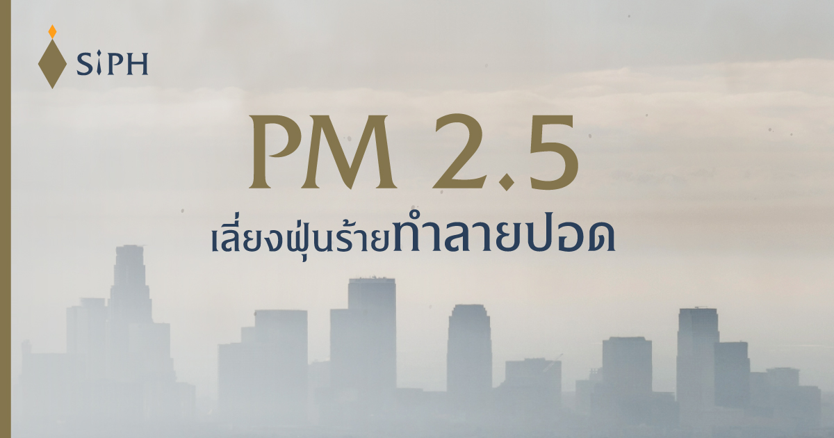 PM 2.5 เลี่ยงฝุ่นร้ายทำลายปอด