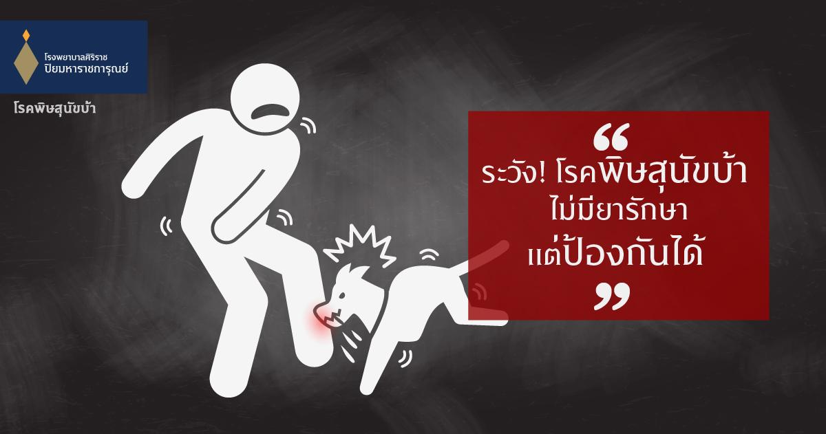 ระวัง! โรคพิษสุนัขบ้า ไม่มียารักษาแต่ป้องกันได้ (Rabies)
